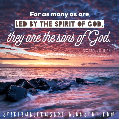 Image result for image romans 8:14