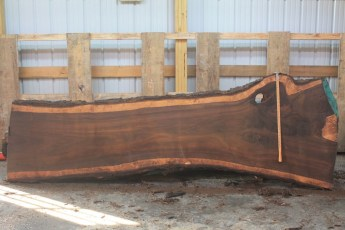 Walnut 296-3  Length 11' Max Width (inches) 42 Min Width (inches) 26 Thickness 10/4  Notes :