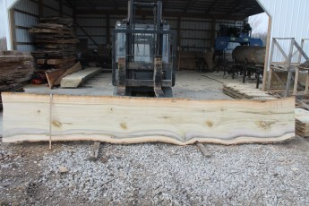 "Tulip Poplar 134-4  2 1/4"" x 30"" - 26"" Wide x 16' Long  Kiln dried"