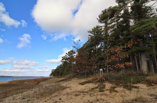 sayler park shoreline