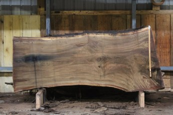 "585  Walnut -4 10/4 x 43"" x  35"" Wide x  8'  Long"