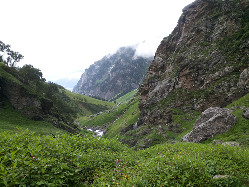 Meadows on the way to Chikka Hampta Pass