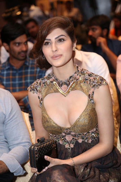 Actress Naaz Norouzi Hot Cleavage Show Stills At SIIMA Short Film Awards 2017 ❤