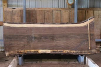 "533 Walnut -4  10/4 x  39"" x  35"" Wide x 8' 11"" Long"