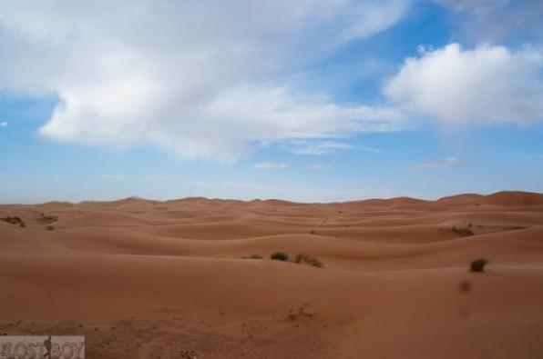 sahara desert-7