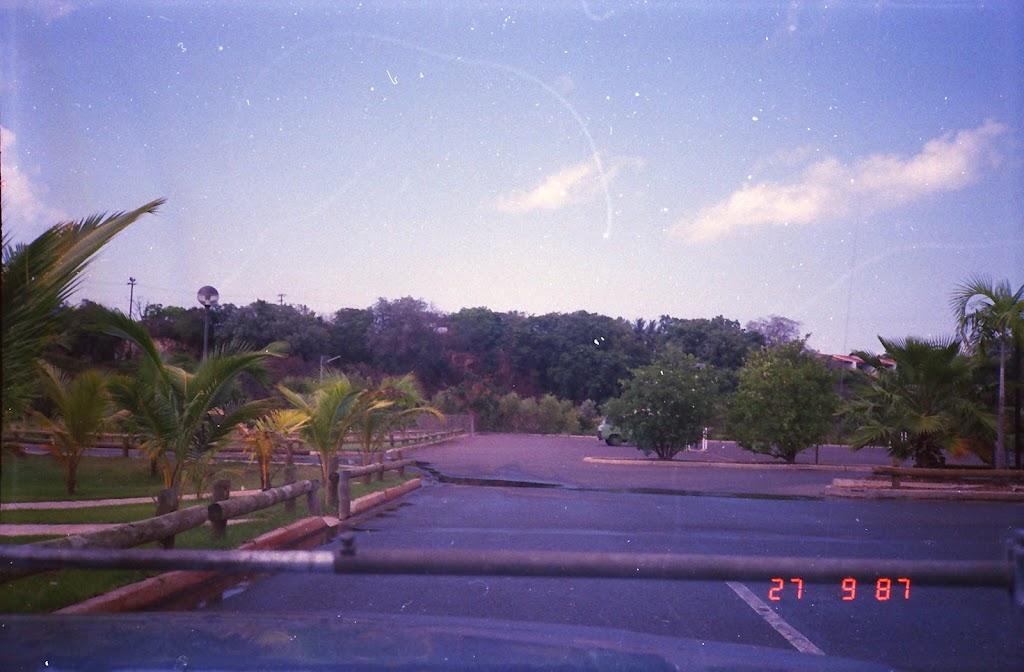 3100Darwin Botanic Gardens
