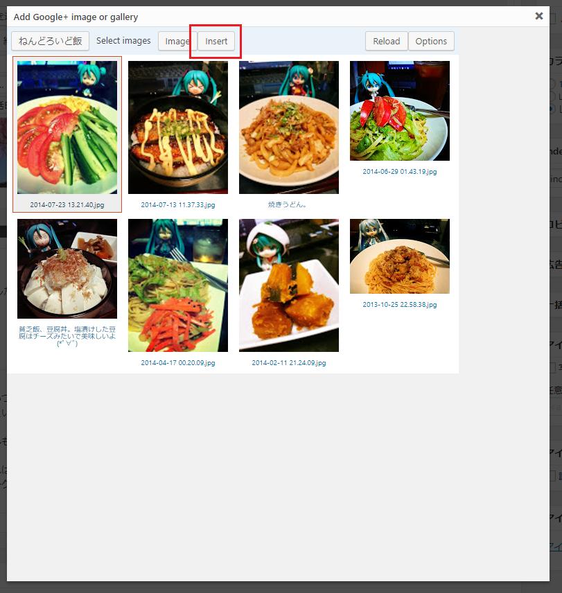 google_photo_plugin_31.png