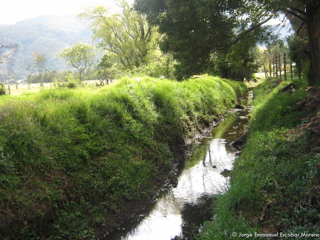 Quebrada Aguas Calientes