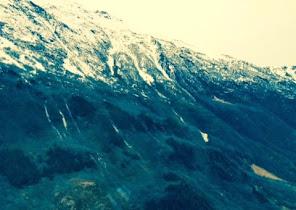tundra 8.jpg