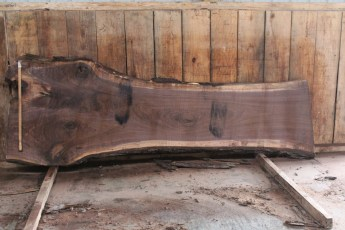 "509 Walnut -6 10/4  x  42"" x  27"" Wide x 10' Long"