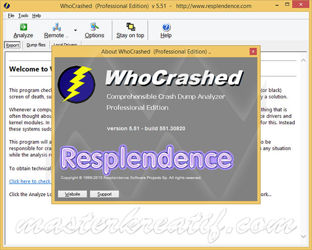 WhoCrashed Professional 5.51