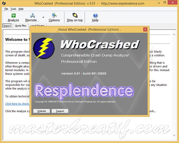 WhoCrashed Professional 5.51