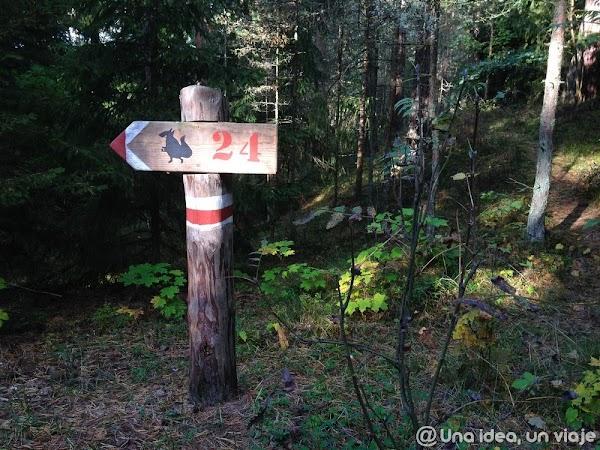 recorrido-paises-balticos-top-3-parques-naturales-unaideaunviaje.com-06.jpg