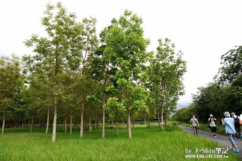 農純鄉 原淬滴雞精11