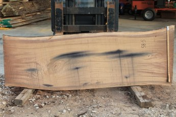 "058 -5 Walnut  2"" x 37 - 31"" Wide x 8' Long  Kiln dried"
