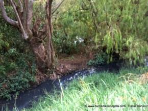 Humedal La Conejera 1997