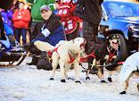 Iditarod2015_0379.JPG