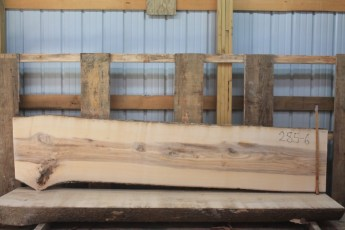 Hackberry 285-6  Length 10' Max Width (inches) 29 Min Width (inches) 23 Thickness 10/4  Notes : Kiln Dried