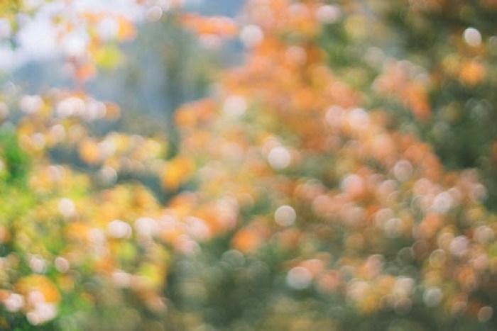 fall hiking in utah (16)