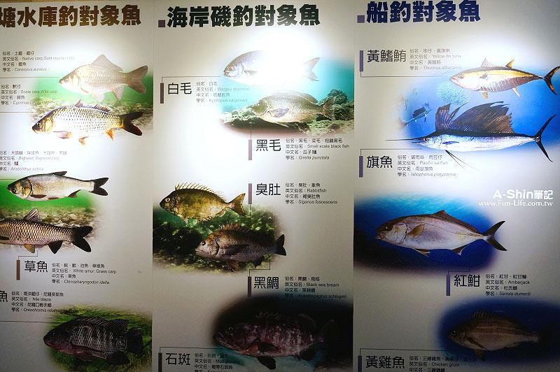 台中觀光工廠-寶熊漁樂館7