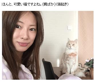 北川景子のすっぴん画像2