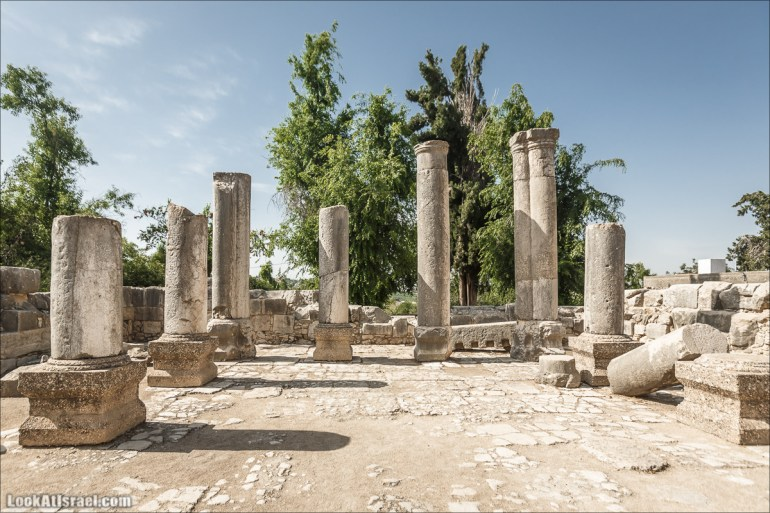 Барам | Baram | LookAtIsrael.com - Фото путешествия по Израилю