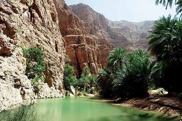 султанат оман отдых