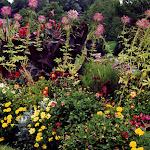 images-Seasonal Color-seasonal_b29.jpg
