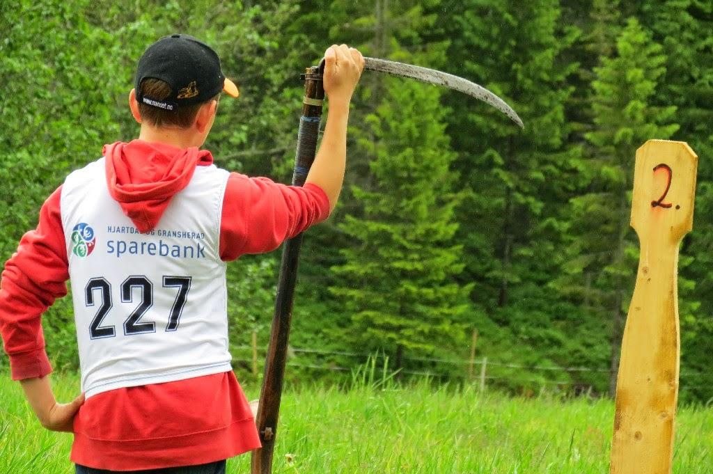 Kosidba u Norveskoj- Turisticka organizacija opštine Ljig261