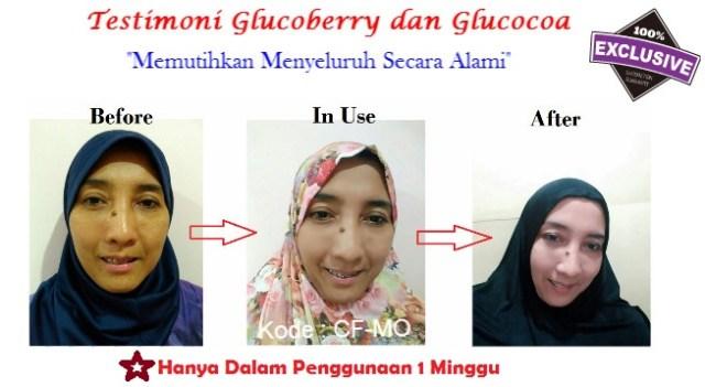 Harga Suplemen Glucoberry