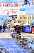Iditarod2015_0325.JPG