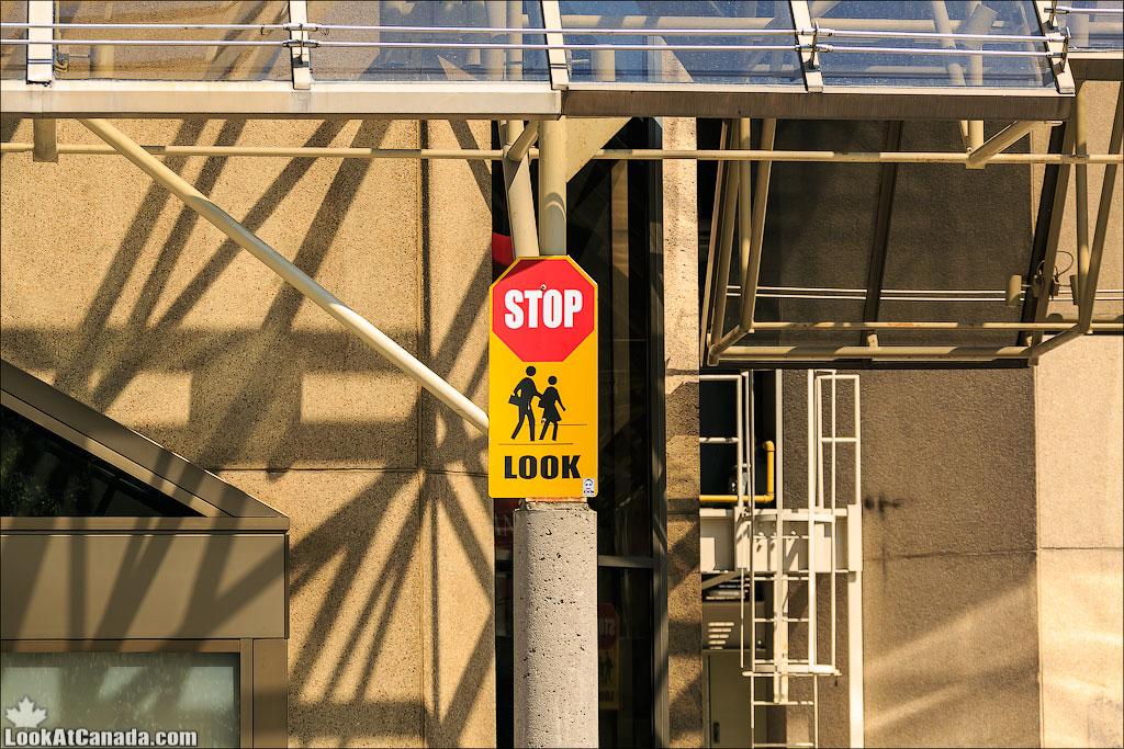 LookAtCanada.com / Торонто | LookAtIsrael.com - Фотографии Израиля и не только...