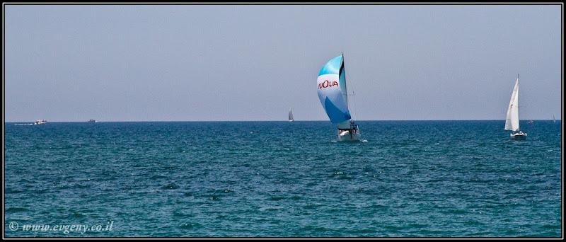 Фото: На море яхты грохотали