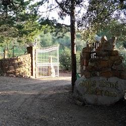 Autumn-2017-spiritual-meditation-retreat-Satguru-Sirio-Satsang6.jpg