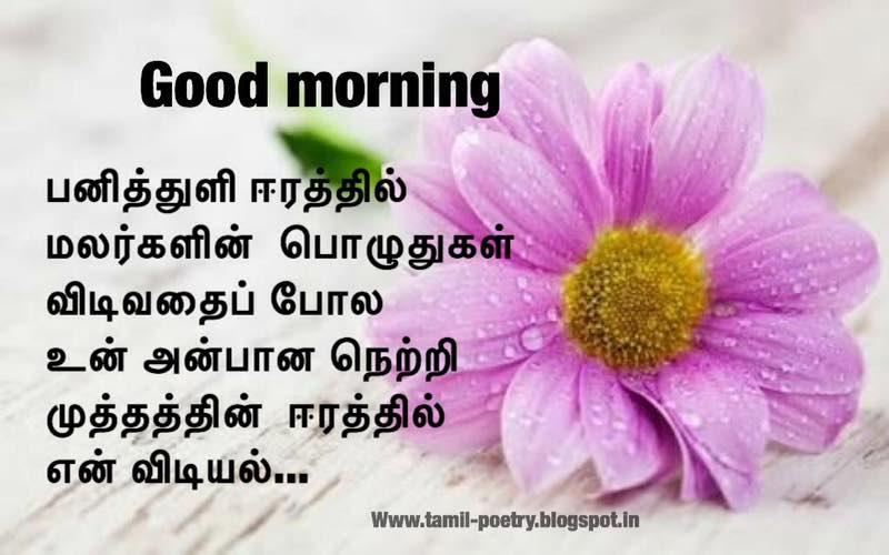 Good Morning Beautiful Kavithai : Good morning images tamil kavithai wallpaper