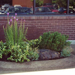 images-Landscape Design and Installation-lnd_dsn_32.jpg