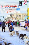 Iditarod2015_0278.JPG