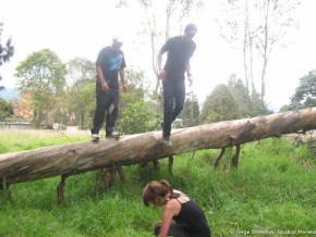 Salto desde el árbol, Humedal El Salitre