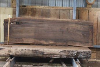 "578  Walnut -5 10/4 x 32"" x  30"" Wide x  8'  Long"