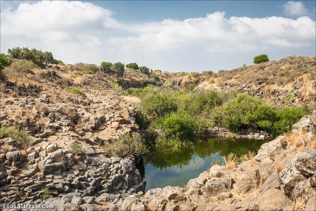 Верхний и нижний Завитан   Zavitan stream   נחל זוויתן   LookAtIsrael.com - Фото путешествия по Израилю