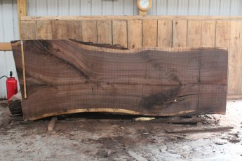 "508 Walnut -6 12/4  x  50"" x  39"" Wide x 10' Long"