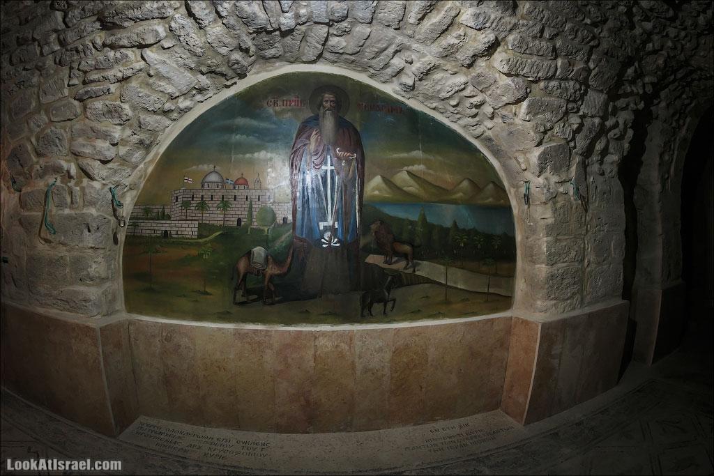 Рыба доплыла до монастыря Герасима | LookAtIsrael.com - Фотографии Израиля и не только...