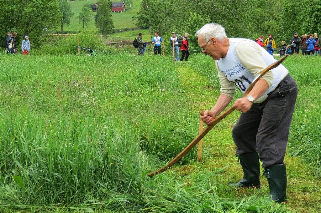 Kosidba u Norveskoj- Turisticka organizacija opštine Ljig245