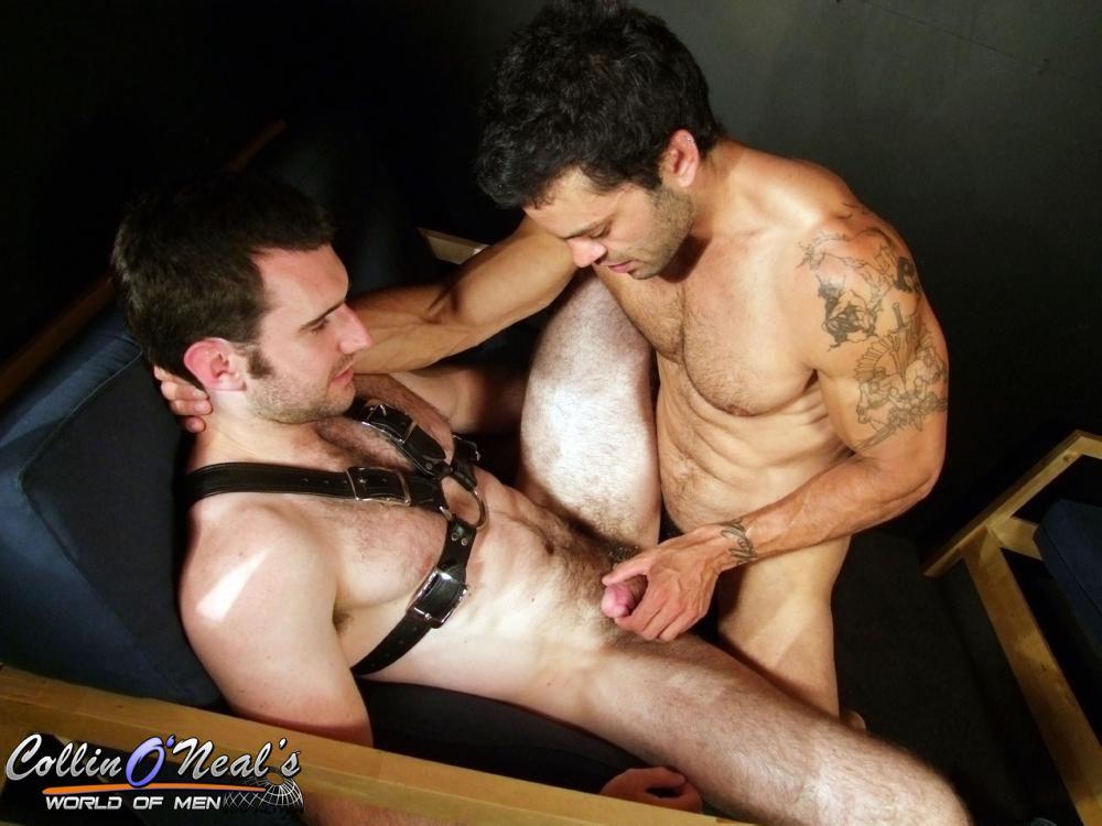 Rogan Fucks Josh Harris - Hairy Guys In Gay Porn-3670