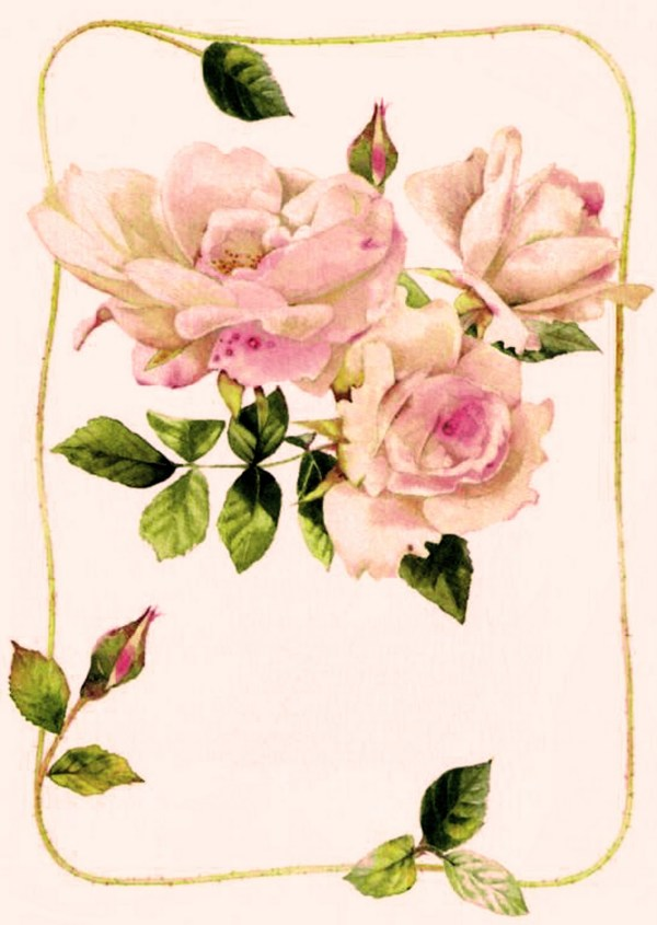 Мои заскрапушки: Винтажные картинки с цветами.