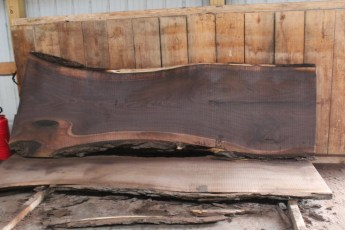 "508 Walnut -9 10/4  x  44"" x  29"" Wide x 10' Long"