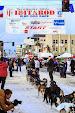Iditarod2015_0241.JPG