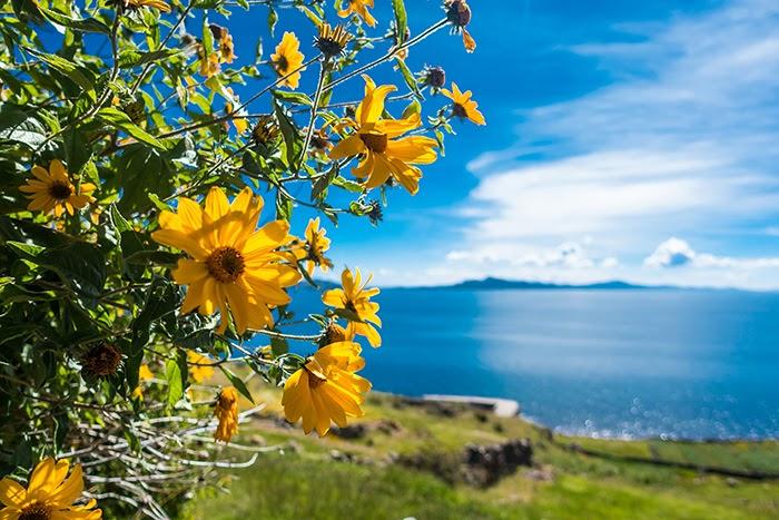 Titicaca32.jpg