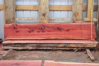 "Cedar 281-3  Length 8' 6"" Max Width (inches) 18 Min Width (inches) 16 Thickness 8/4  Notes : Kiln Dried"