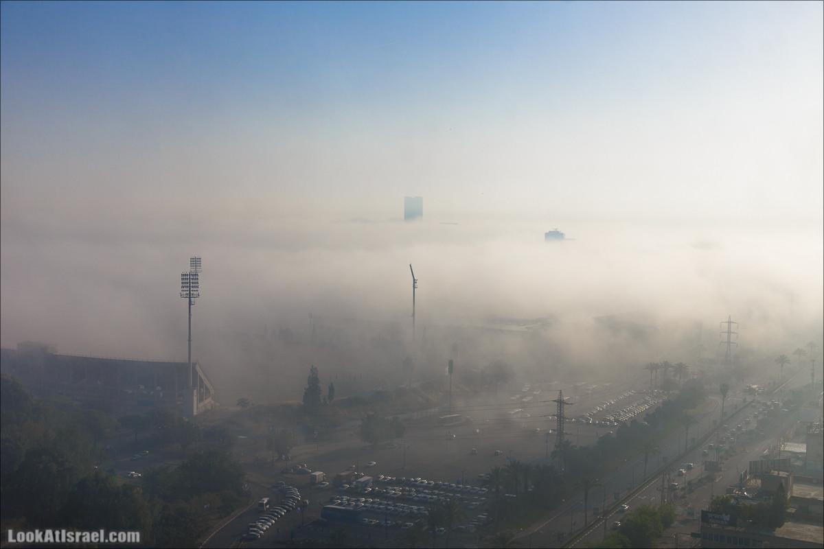 Туман над Тель Авивом и парком ха-Яркон   Deep fog over Tel Aviv, park Yarkon   ערפל כבד מעל תל אביב   LookAtIsrael.com - Фото путешествия по Израилю